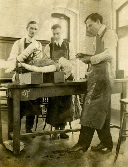 B10 - StFX Stationary Hospital Unit, No. 9, 1916