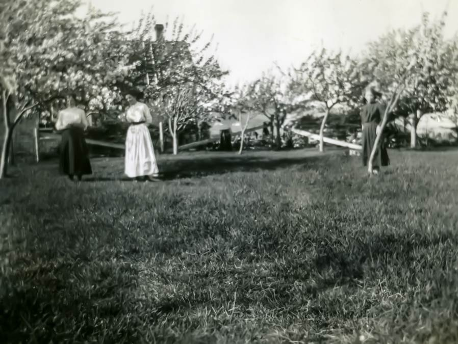 B14 - Apple Blossom Time, c early 1900s