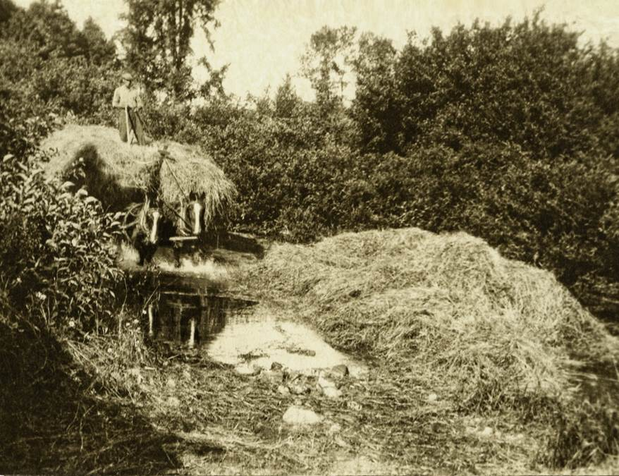 B14 - Bringing in the hay, c 1920s