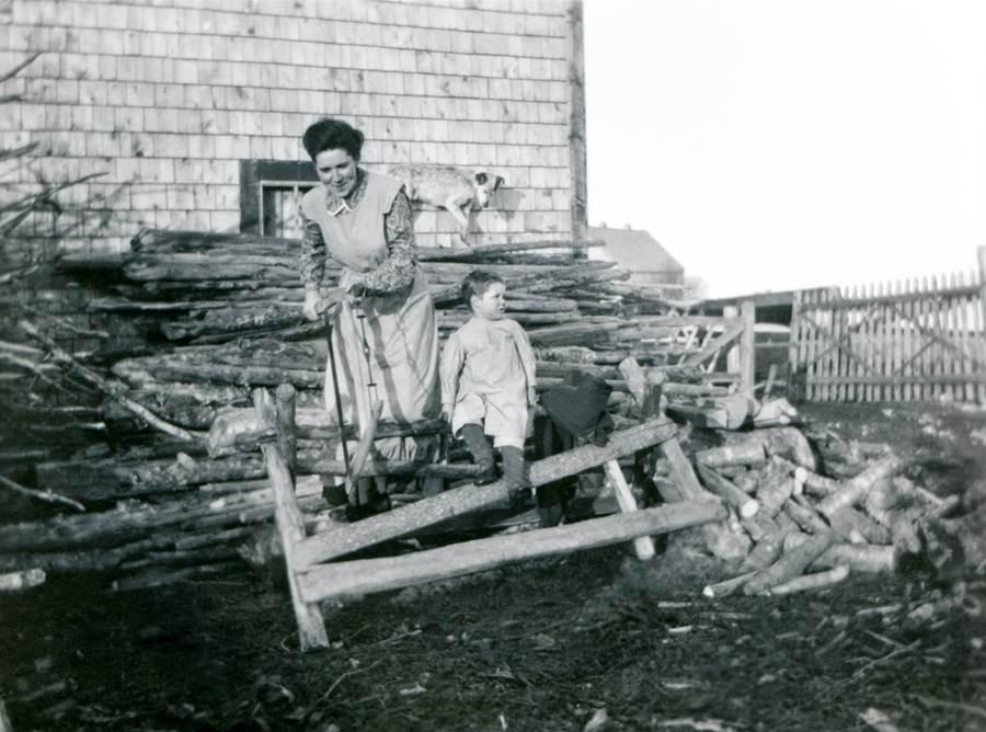 B5 - Sawing logs, c 1910