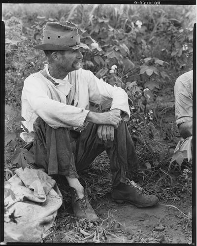 PhotogrammarFSAAlabamaCotton1935