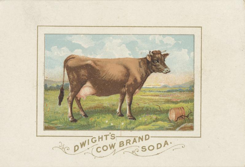 Dwight's_Cow_Brand_SodaJPG